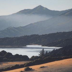 Kathleen Lipinski, Mt. Tamalpais from Azalea Hill