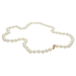 Cultured Pearl, 14k Yellow Gold Necklace